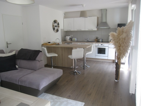 a vendre LOOS appartement 2 pieces, 47m², a LOOS